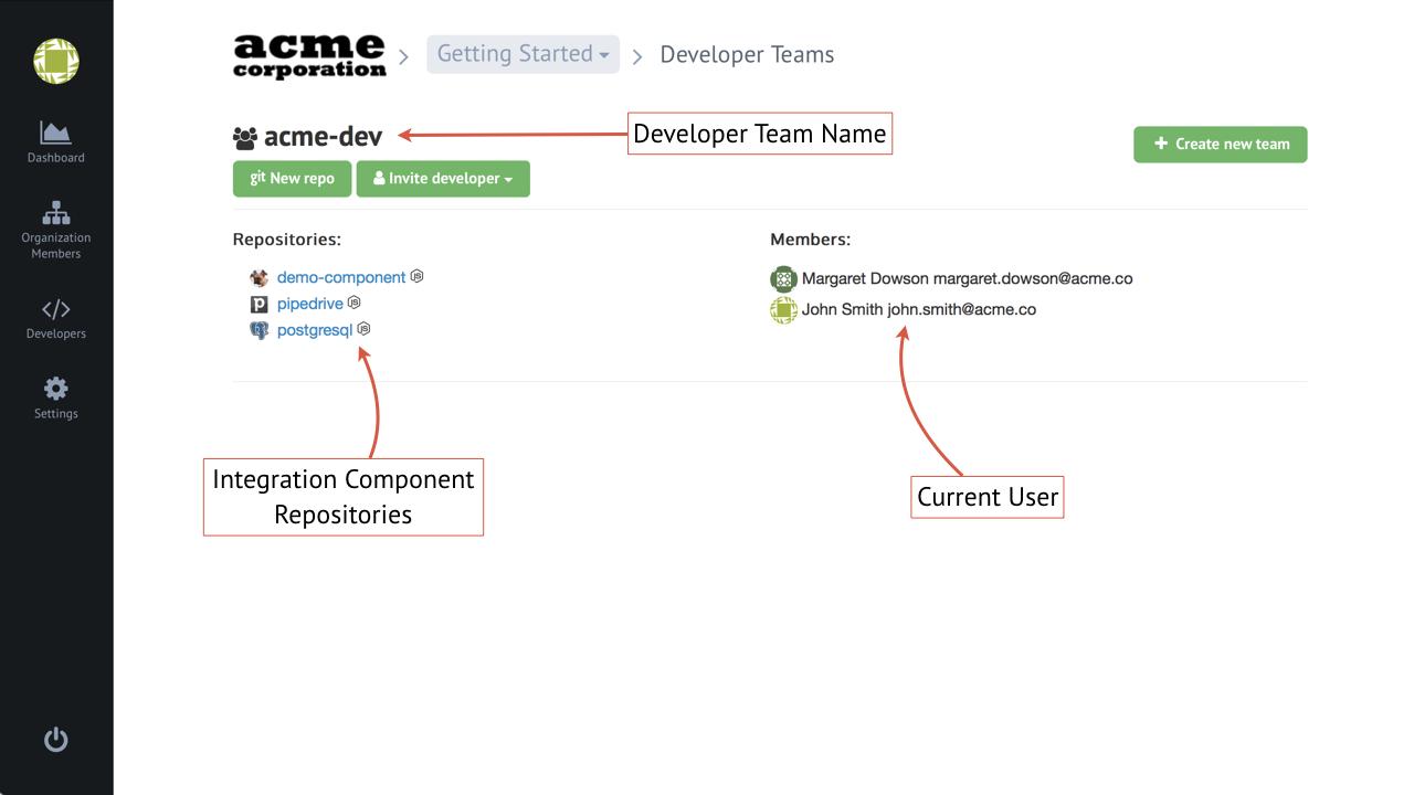 Developer team management